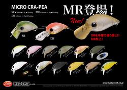 micro_mr.jpg